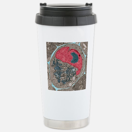 Myeloma cell, TEM Stainless Steel Travel Mug