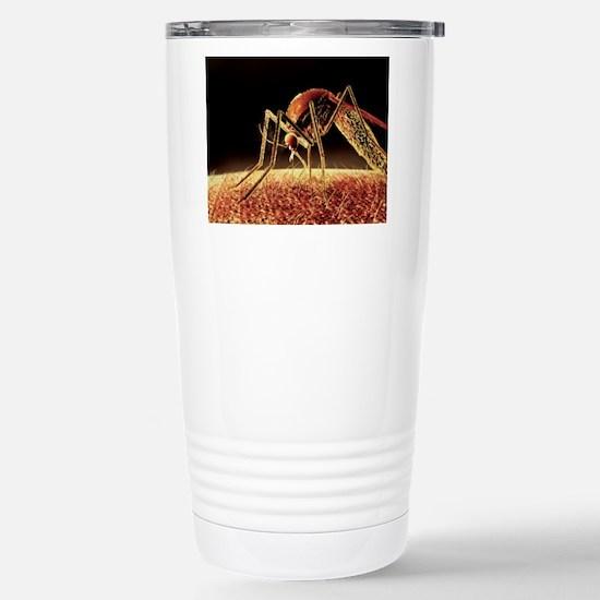 Mosquito sucking blood, Stainless Steel Travel Mug
