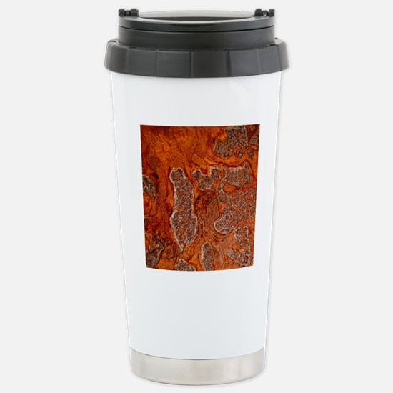 Rust seen on a steel sh Stainless Steel Travel Mug