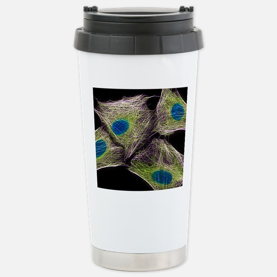 HeLa culture cells Stainless Steel Travel Mug