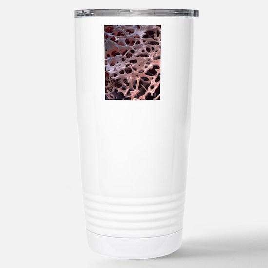 Spongy bone, SEM Stainless Steel Travel Mug