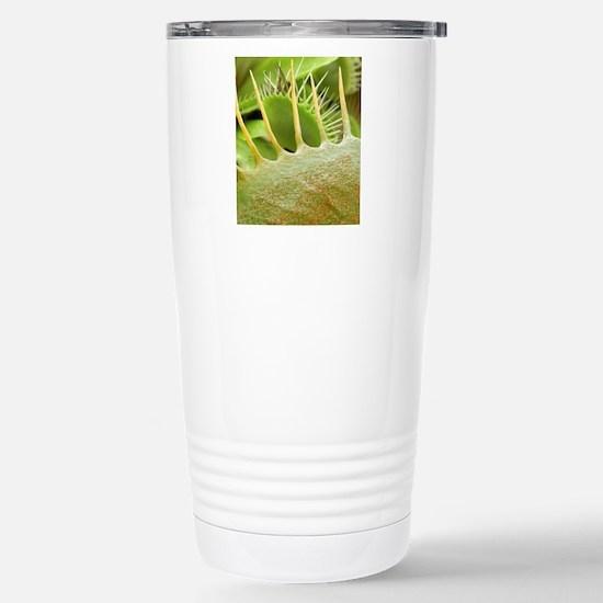 Venus flytrap leaves, S Stainless Steel Travel Mug
