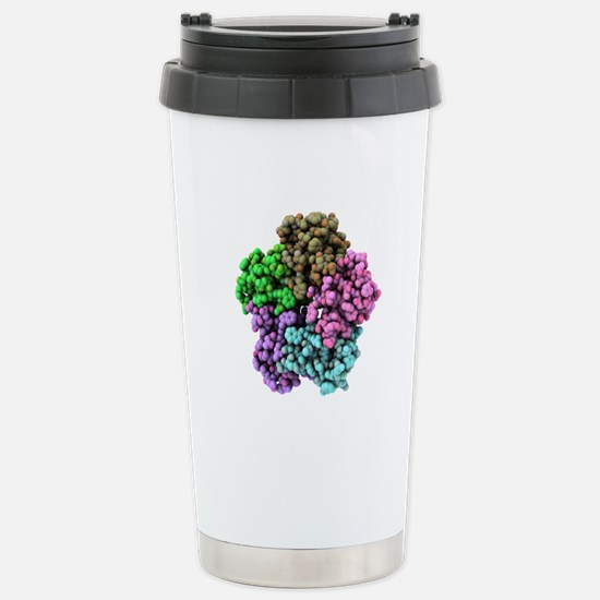 Shiga-like toxin I subu Stainless Steel Travel Mug