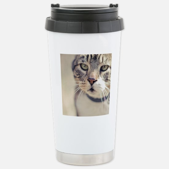 Closeup of face of tabb Stainless Steel Travel Mug