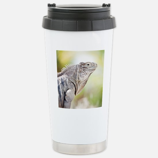 Large green Iguana bask Stainless Steel Travel Mug