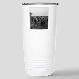 Scottish highland cattl Stainless Steel Travel Mug