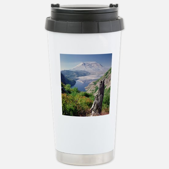 Remains of tree against Stainless Steel Travel Mug