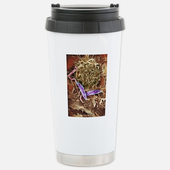 Macrophage attacking a  Stainless Steel Travel Mug