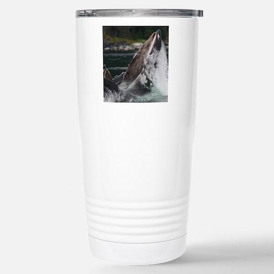 humpback whale Stainless Steel Travel Mug