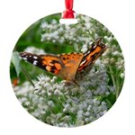 American Lady Butterfly in St Charles MO Ornament