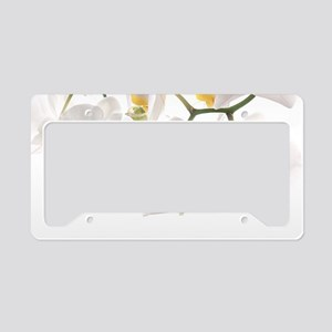 Orchids Reflection License Plate Holder