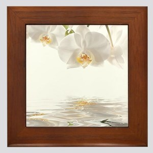 Orchids Reflection Framed Tile