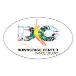 Dsc Colorful Logo Sticker
