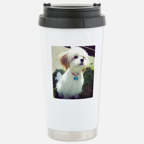 Barney the Cavachon in  Stainless Steel Travel Mug