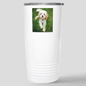 Barney the Cavachon on  Stainless Steel Travel Mug