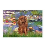 Lilies and Ruby Cavalier Postcards (Package of 8)