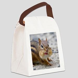 Funny Chipmunk Canvas Lunch Bag