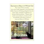 """""""Sponsor A Cat"""" Window View Mini Poster Print"""