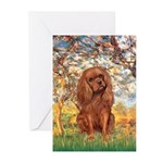 Spring and Ruby Cavalier Greeting Cards (Pk of 10)