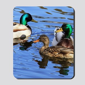 Mallards Mousepad
