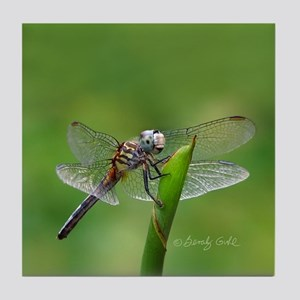 Happy Dragonfly-- Tile Coaster