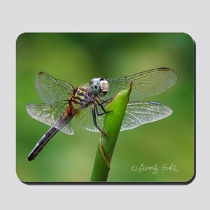 Happy Dragonfly-- Mousepad