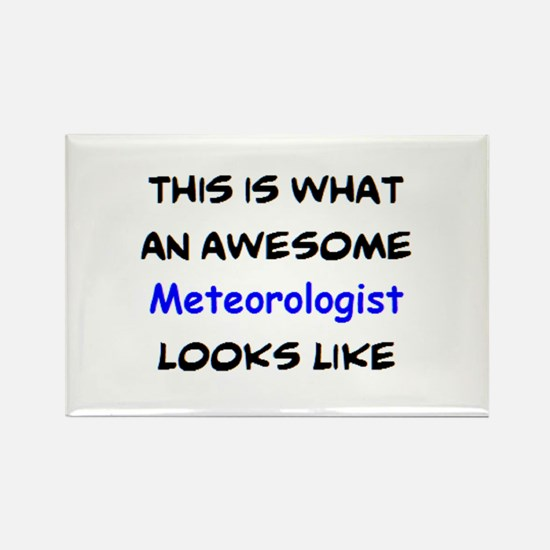 awesome meteorologist Rectangle Magnet