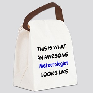 awesome meteorologist Canvas Lunch Bag