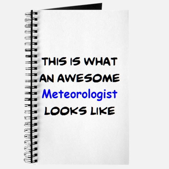 awesome meteorologist Journal