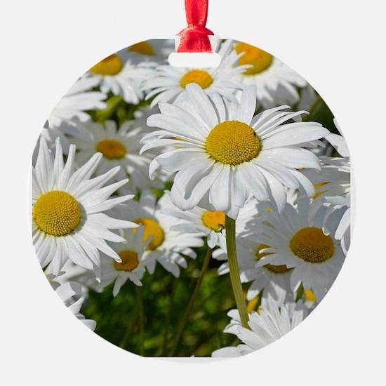 Floral botanical Ornament