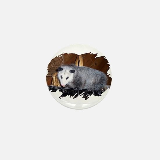 Possum on a Shelf Mini Button