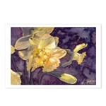 Moonlight Daffodils Postcards (Package of 8)