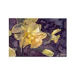 Moonlight Daffodils Rectangle Magnet