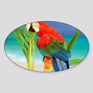Parrot Sticker (Oval)