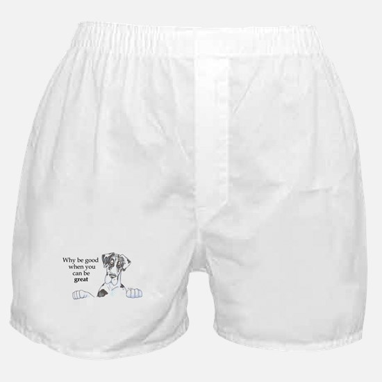NH Why be good Boxer Shorts