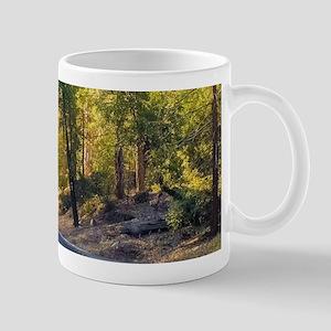 Drive into the Sunshine Mugs
