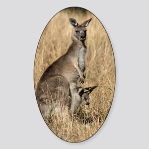 Kangaroos in Australian Bush Sticker (Oval)