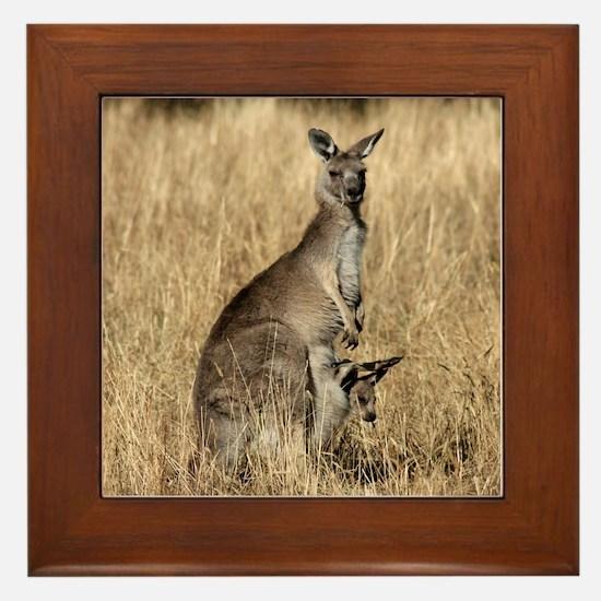 Kangaroos in Australian Bush Framed Tile