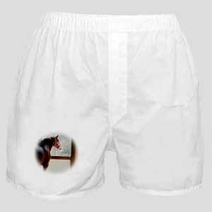 clydesdaleCLOCK Boxer Shorts