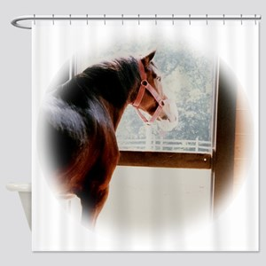 clydesdaleCLOCK Shower Curtain