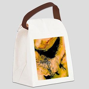 Sun Spot Canvas Lunch Bag