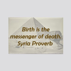 Birth Is the Messenger Magnets