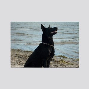Black GSD at the Beach Magnets