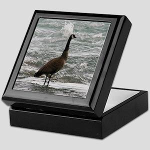 A Canadian goose Keepsake Box