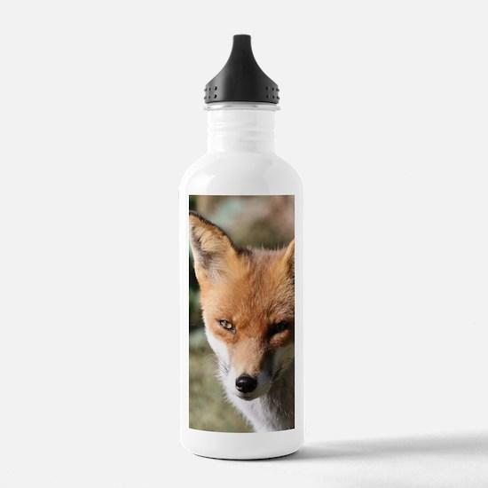 Cute Fox head Water Bottle
