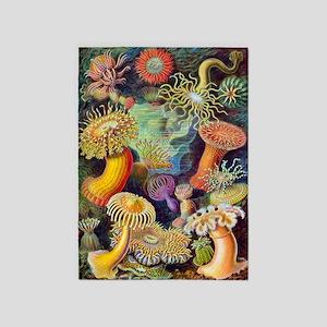 Vintage Haeckel Sea Anemones 5'x7'area Rug