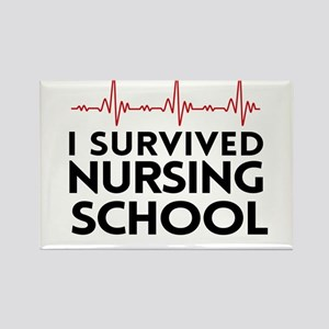 I survived nursing school Magnets