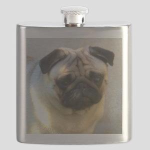 Pug headstudy Flask