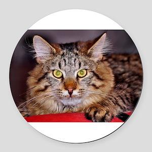 Maine-Coone Cat Round Car Magnet