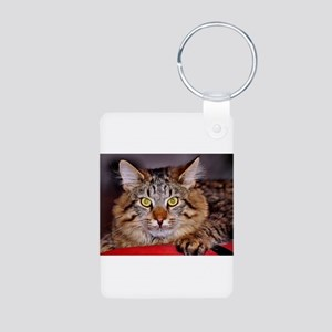 Maine-Coone Cat Aluminum Photo Keychain